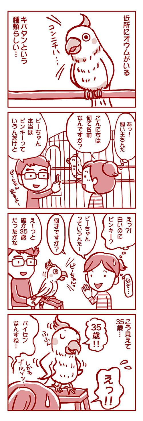 ブログ・ぴーちゃん
