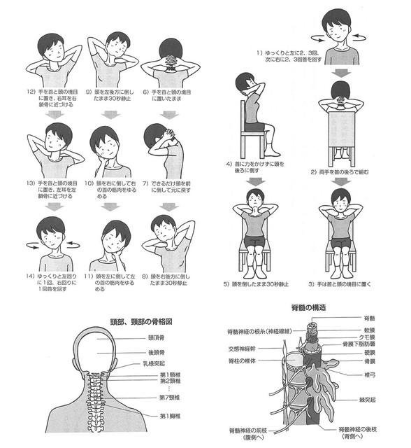 慢性疲労は首で治せる