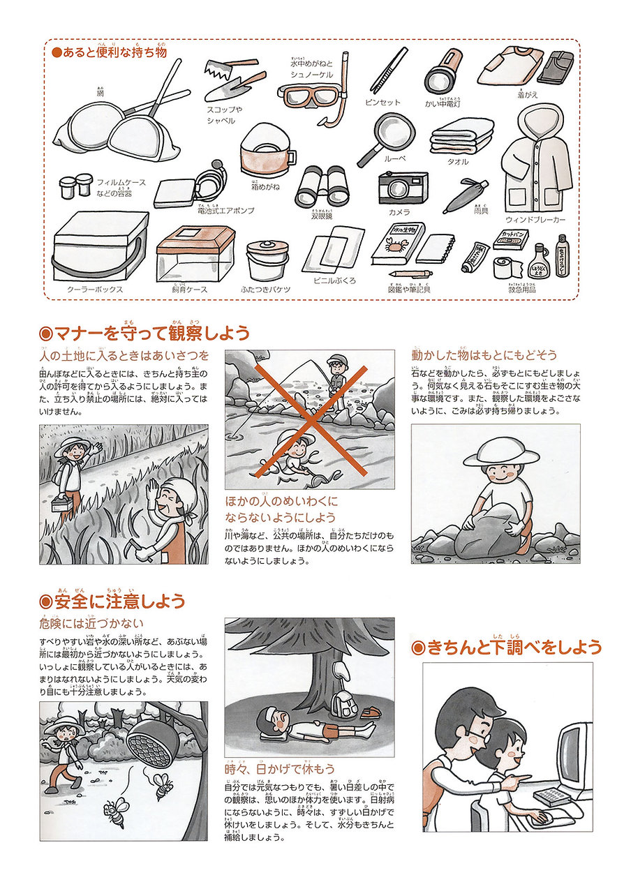 小学館図鑑.jpg