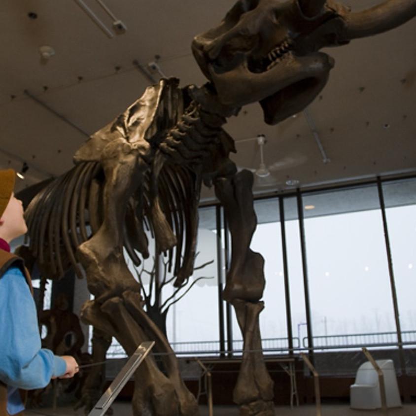 Visite au musée d'histoire naturelle (31 juillet)