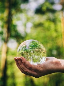 Sustainable Finance Disclosure Regulation leidt tot verbetering van ESG-beleid