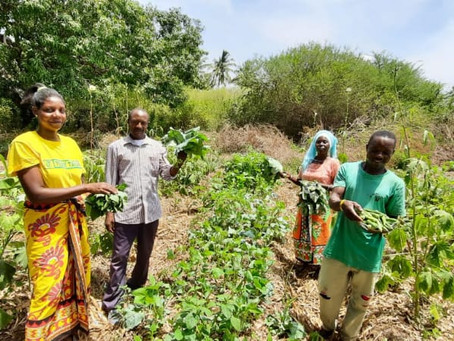 From Mustard Seeds to Food Forests: A Regenerative Journey