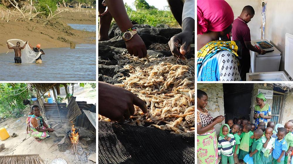 Shrimp Fishing Builds an Economy