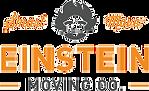 logo einstein.png