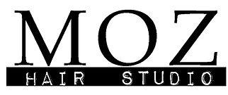 moz_logo.jpg