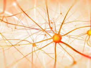 Hormonelle Balance und Stresslinderung