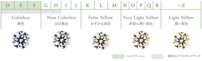 カラー (1).jpg