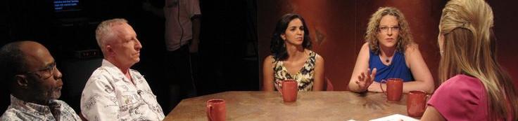 PTSD panel on PBS