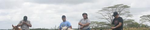 Big Is Horseback