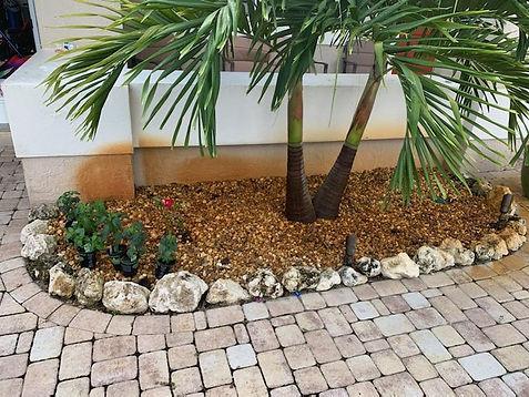 palm tree rusty.jpeg