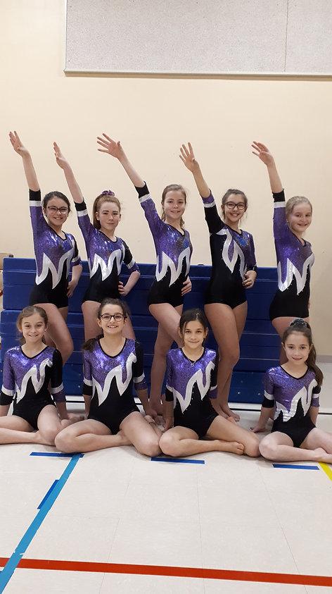 Gymnastique compétitive Dolbeau-Mistassi