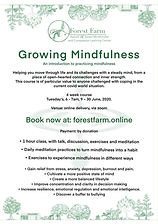 growing mindfulness flyer.jpg