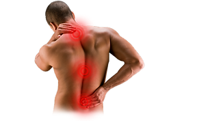 back pain 1 - upper, middle and lower.pn