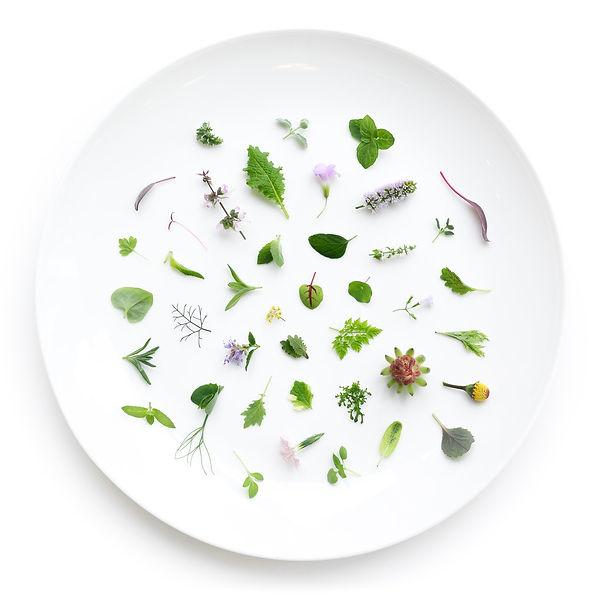 Plate.jpg
