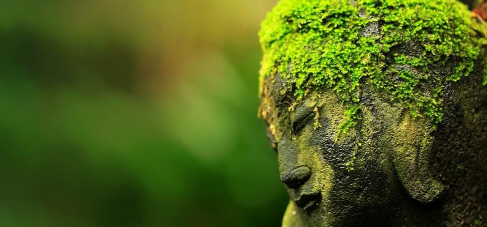 green buddha.png