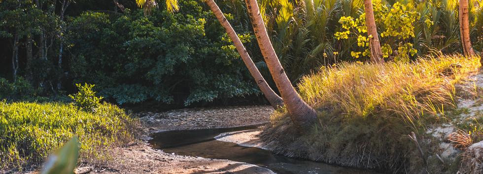 creek shot.jpg