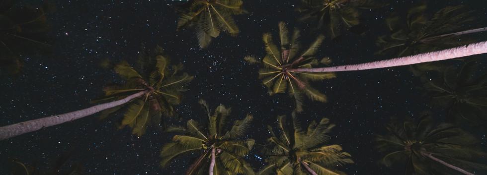 starry night shot.jpg