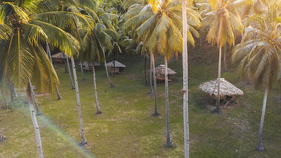 huts arial view.jpg