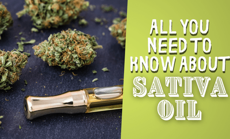 All You Need to Know About Sativa Oil