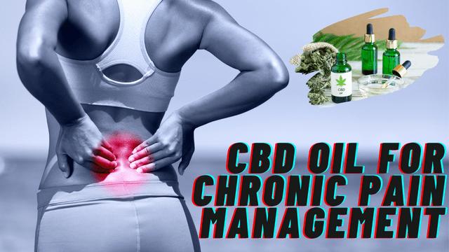 CBD Oil for Chronic Pain Management