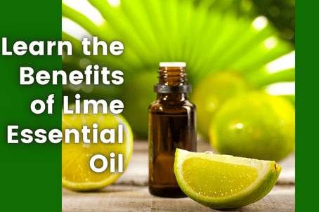 Learn the Benefits of Lime Essential Oil