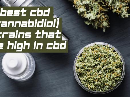 Top CBD (cannabidiol) strains high in potency