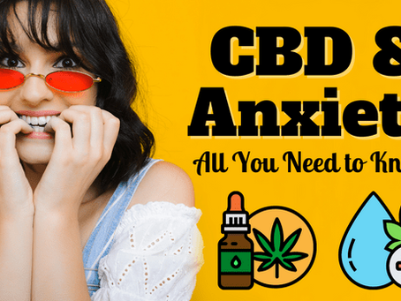 CBD and Anxiety – All You Need to Know!