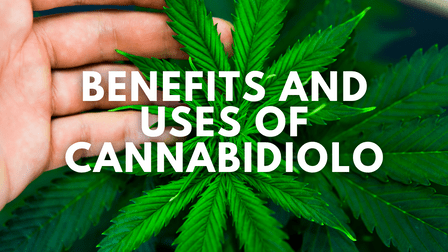 Benefits and Uses of Cannabidiolo