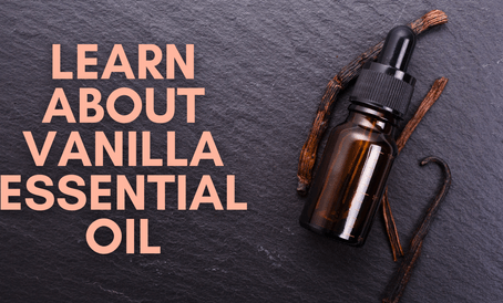 Learn About Vanilla Essential Oil