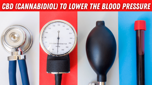 CBD (Cannabidiol) To Lower the Blood Pressure