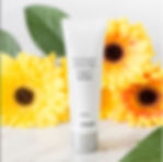 Antioxidant flowers.JPG