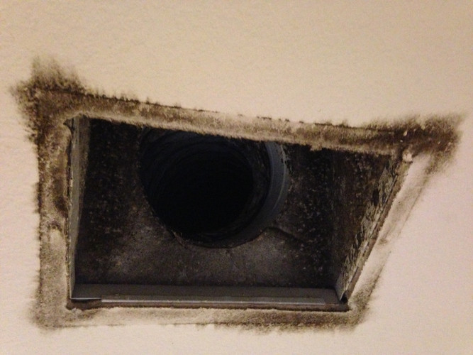 removal of mold in air ducts