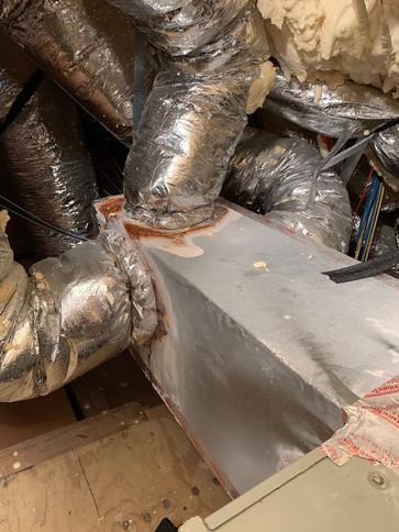 attic remediation spring tx