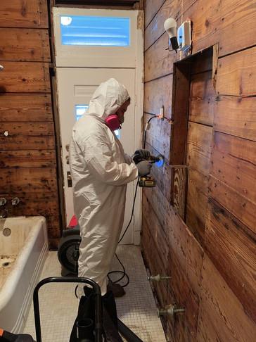 mold remediation companies dallas tx