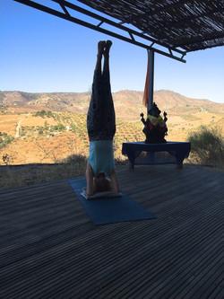 Ringwood Yoga