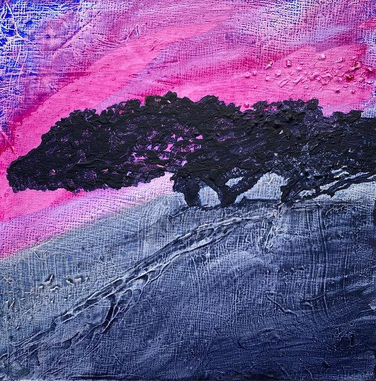 Shelly's Tree