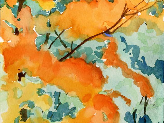 Riverdale Fall Colors