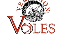 Voles unveil new website