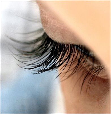 lash extensions indiana