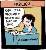 student reading a neuroanatomy books