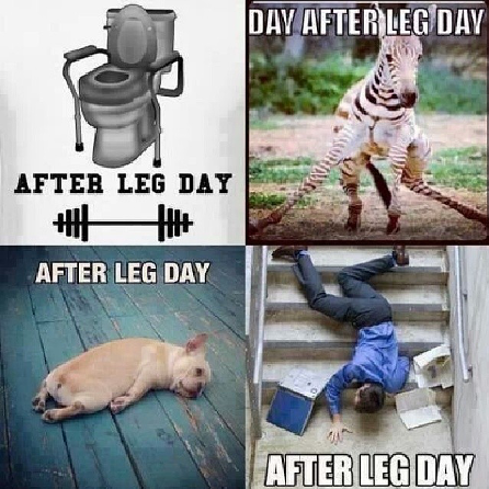 four memes about leg day