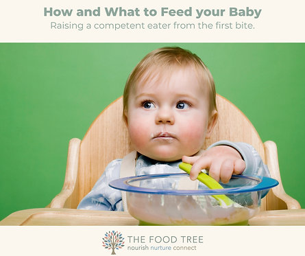 How and What to feed your Baby Programme