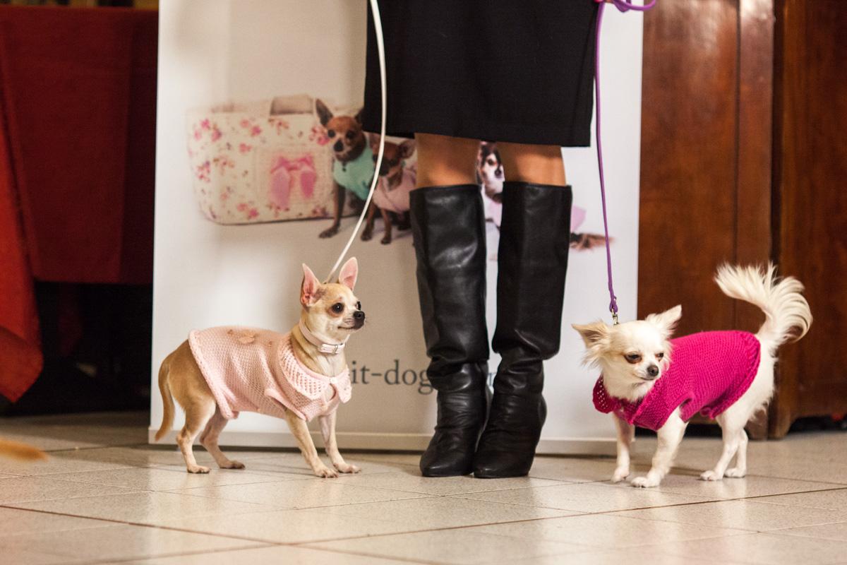 It-dogs-Natale2014-web-022.jpg