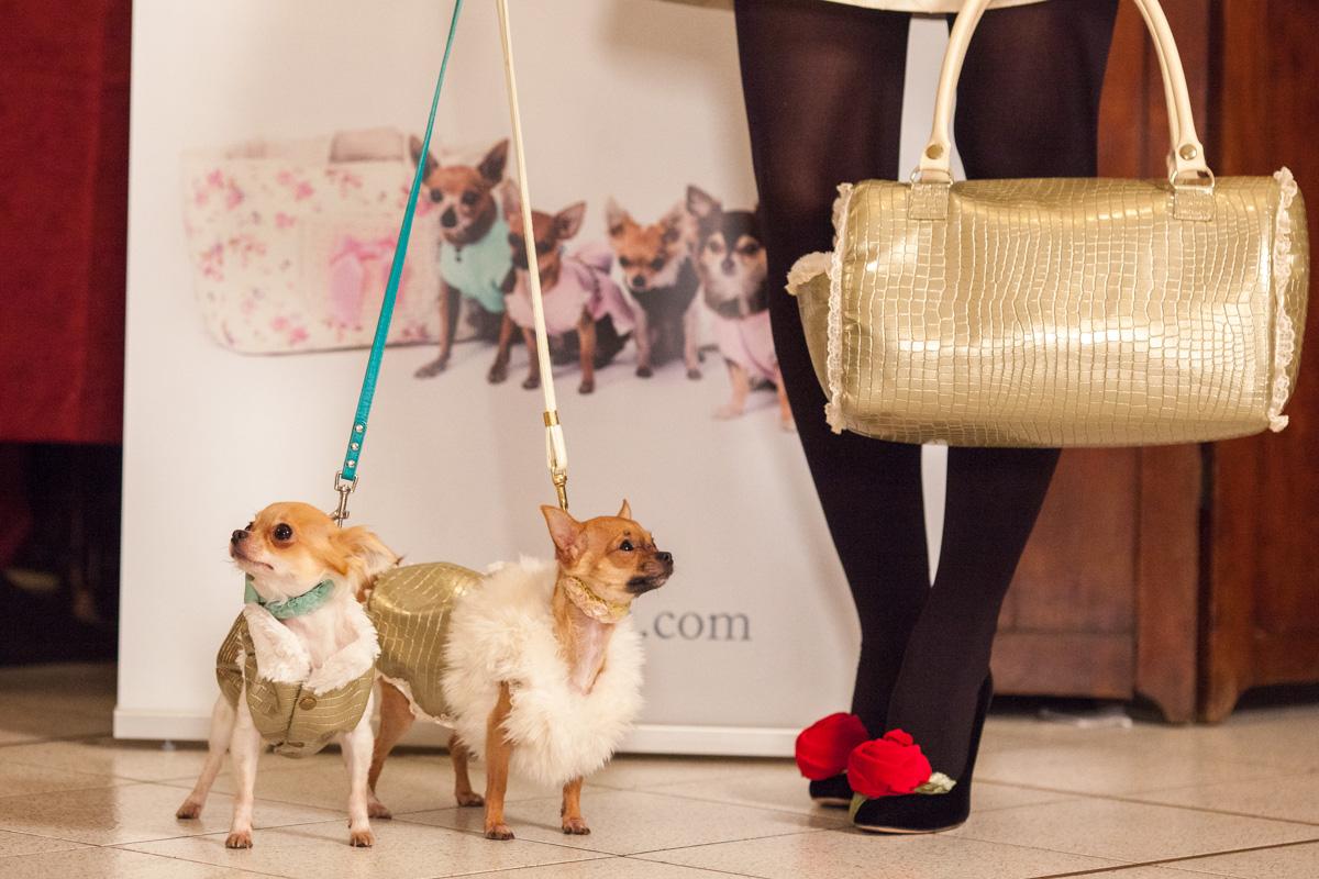 It-dogs-Natale2014-web-092.jpg