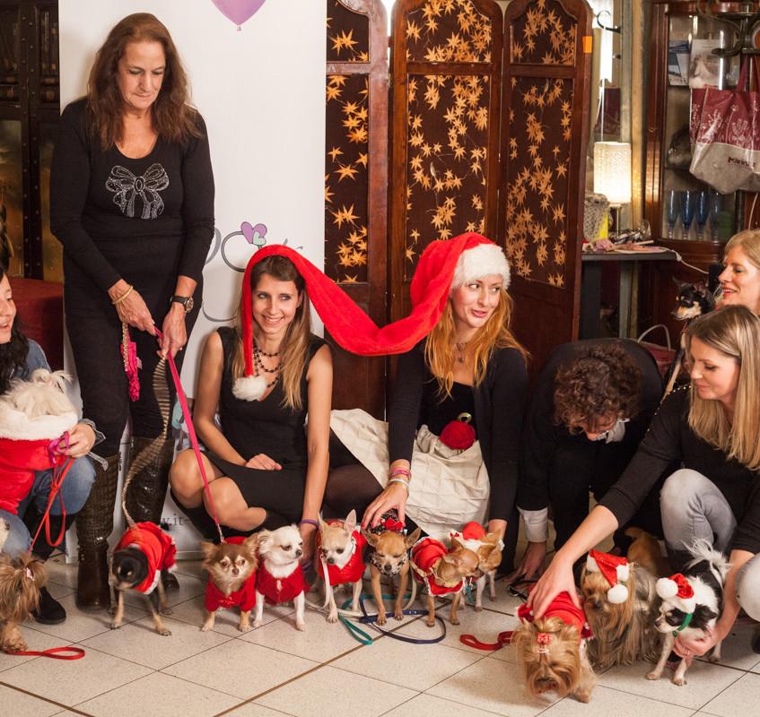 It-dogs-Natale2014-web-106
