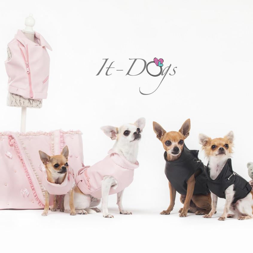 it-dogs-con-logo-5