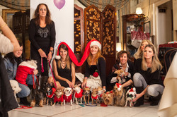 It-dogs-Natale2014-web-105.jpg
