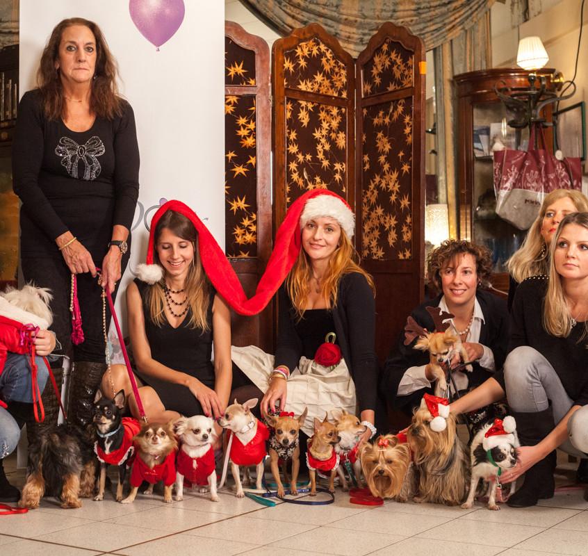 It-dogs-Natale2014-web-105