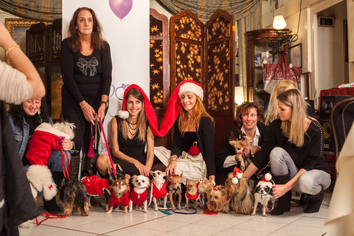It-dogs-Natale2014-web-104.jpg