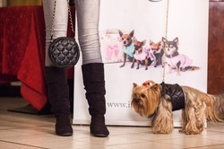 It-dogs-Natale2014-web-072.jpg